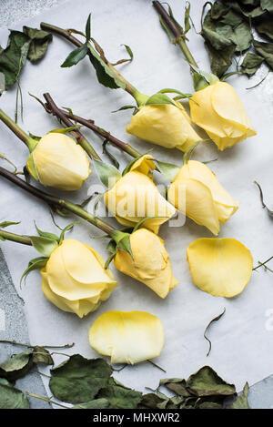 Steli di rose sul tavolo Foto Stock