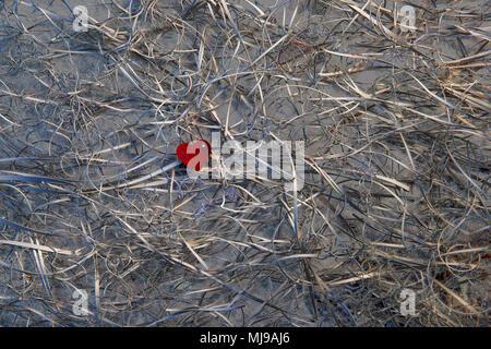Un rosso cuore di vetro al centro di un groviglio di i ritagli di carta su uno sfondo di ardesia. Falso colore ha girato la carta bianca metallico. Foto Stock