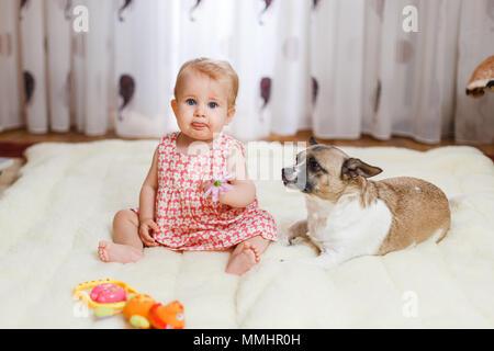 Poco divertente ragazza caucasica il bambino si siede a casa sul pavimento su un tappeto di luce con il migliore amico di metà della razza cane con macchie di colore e sho Foto Stock