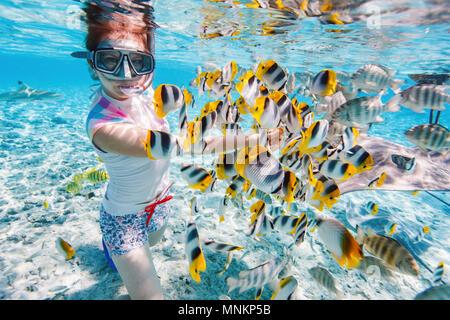 La donna lo snorkeling nelle chiare acque tropicali tra pesci colorati Foto Stock