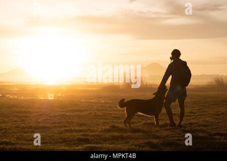 Silhouette di donna e cane a camminare su sfondo al tramonto. Foto Stock