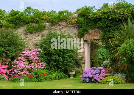 Giardini del Regno Unito. Una bella estate giardino murato aiuola di confine display comprendente vari ortensie. Una porta aperta mostra uno scorcio di un walled garden vegetali al di là. Foto Stock