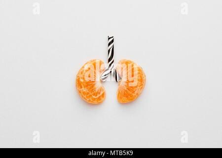 Immagine concettuale dei polmoni umani. I tangerini e paglia progettati come polmone su sfondo bianco con copia spazio. Foto Stock