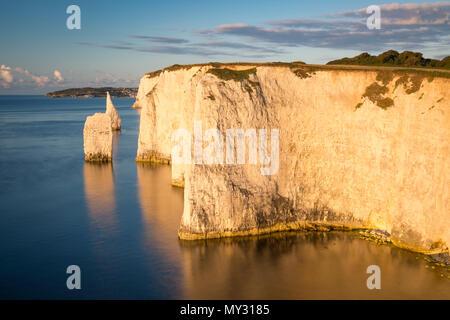 Alba presso le bianche scogliere e rocce di Harry a Studland, Isle of Purbeck, Jurassic Coast, Dorset, Inghilterra Foto Stock