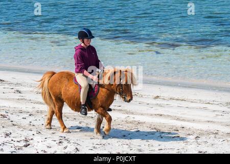 Giovane ragazza / adolescente cavalcare pony Shetland sulla spiaggia di sabbia lungo la costa scozzese sulle isole Shetland, Scotland, Regno Unito Foto Stock
