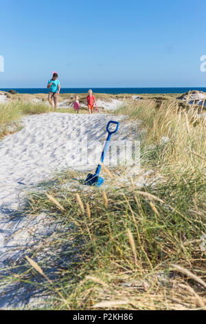 Famiglia giovane, padre e i suoi bambini escursioni attraverso le dune di Dueodde, spiaggia sabbiosa, estate, Mar Baltico, Bornholm, Dueodde, D Foto Stock