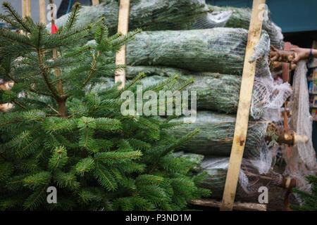 London, Regno Unito - Dicembre 2017. Alberi di Natale è in vendita in Columbia Road Flower Market nella zona est di Londra. Formato orizzontale. Foto Stock