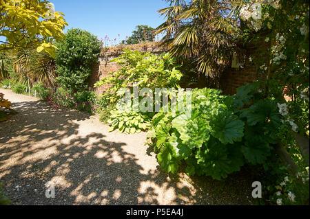 Giardino giungla parte dei giardini murati a Burton Agnese Hall in East Riding of Yorkshire, Inghilterra, Regno Unito, GB. Foto Stock