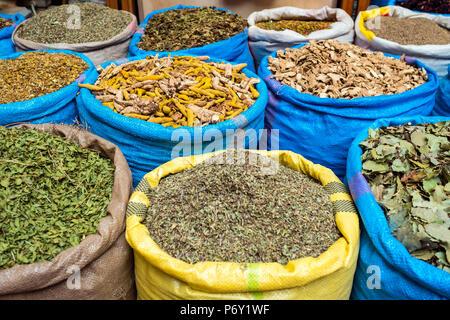 Il Marocco, Marrakech-Safi (Marrakesh-Tensift-El Haouz) regione, Marrakech. Le erbe aromatiche essiccate e le spezie per la vendita nel Mellah spice market. Foto Stock