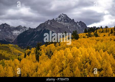 Colorado oro sul display completo Foto Stock