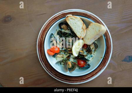 Vista superiore del piatto di frutti di mare con cozze in salsa cremosa Foto Stock