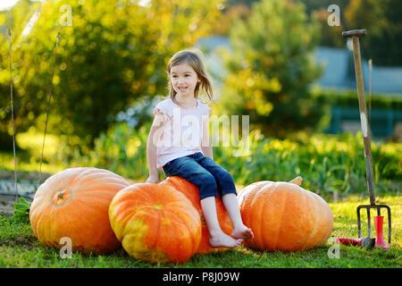 Incantevole piccola ragazza seduta su un enorme varietà di zucche in un orto di zucche Foto Stock
