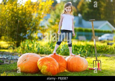 Carino bambina in piedi su un enorme varietà di zucche in un orto di zucche Foto Stock