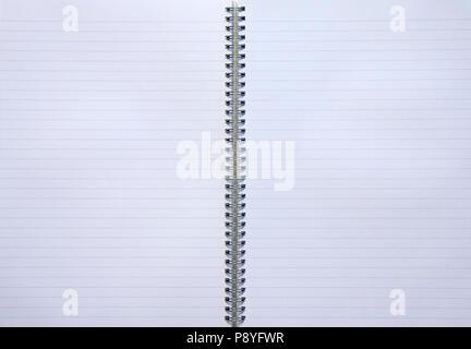 Aprire due pagine in bianco per notebook rivestito con spirale metallica. Copia dello spazio vuoto con la pagina aperta organizzatore isolato su bianco Foto Stock