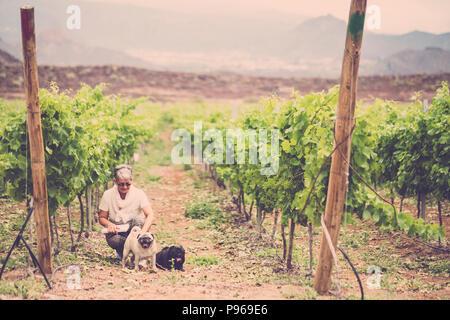 Immagine vintage con caucasian signora seduta in vigna con i suoi due migliori amici cane pug. attività di svago all'aperto per il gruppo nella felicità. amore per Foto Stock