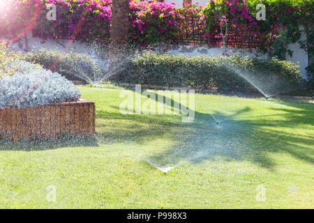 Doccia In Giardino Per Irrigare Il Prato. Innaffiamento Automatico Prati.  Foto Stock
