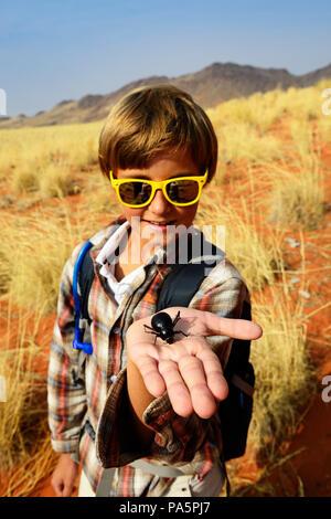 Ragazzo detiene un coleottero nero nella mano, Namib Desert beetle (Onymacris unguicularis), Namib Rand Riserva Naturale Foto Stock