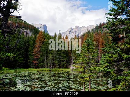Ninfa Lago Parco Nazionale delle Montagne Rocciose Foto Stock