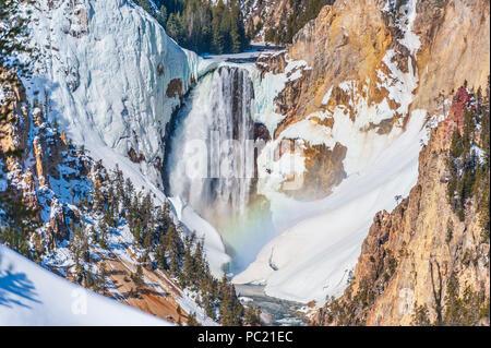 Inferiore cade di Yellowstone e Grand Canyon di Yellowstone sul fiume Yellowstone nel Parco Nazionale di Yellowstone in Wyoming Foto Stock