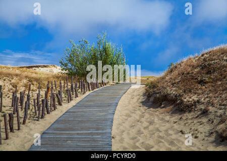 Dune con passerella in legno su sabbia vicino al Mar Baltico. Bordo strada sulla sabbia della spiaggia dune in Lituania. Foto Stock