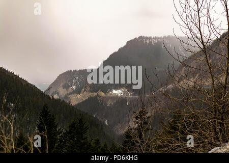 Una vista attraverso gli alberi dell'Autostrada Trans-Canada avvolgimento attraverso montagne del Parco Nazionale di Yoho Foto Stock