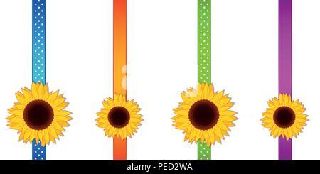Girasole decorazione a nastro impostata illustrazione vettoriale EPS10 Foto Stock