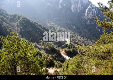 Alberi e percorso di avvolgimento in zona di montagna Foto Stock