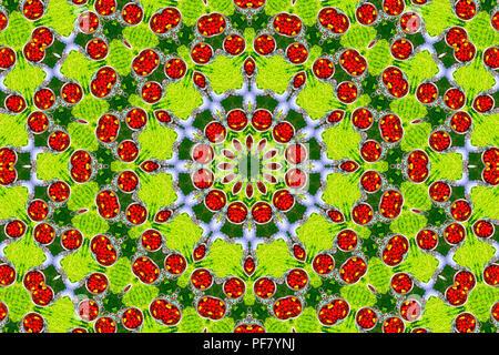 Caleidoscopio psichedelico illusorie schema simmetrico come sfondo Foto Stock