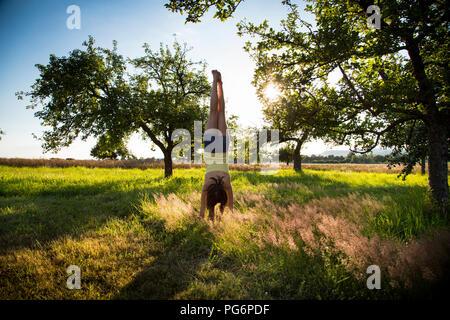 Ragazza giovane facendo handstand sul prato in serata estiva Foto Stock