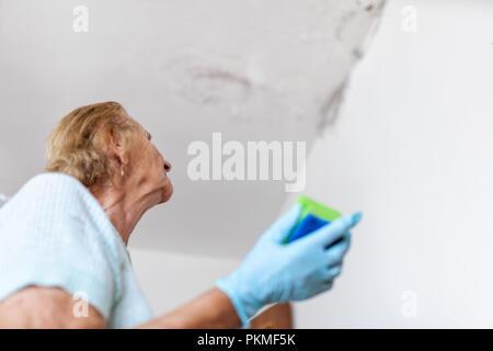 Parete Dacqua In Casa : La pulizia di fungo pericolose da una parete umida dopo il tubo di
