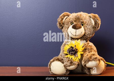 Orsacchiotto di peluche tenendo un fiore con uno sfondo blu Foto Stock