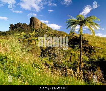 La Nuova Zelanda. Isola del nord. Paesaggio con sperone di roccia sulla collina e felci arboree. Foto Stock