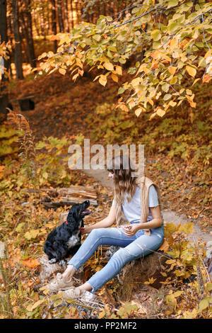 Ritratto di giovane donna con un nero Spaniel cane, in autunno park seduto su un tronco di legno. Alberi con fogliame giallo in background, bella luce del tramonto. Un maglione pesante sulle spalle Foto Stock