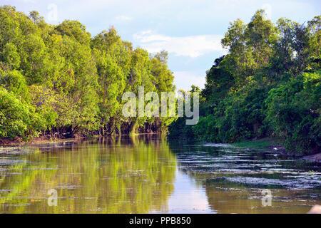 Acqua gialla Billabong, Parco Nazionale Kakadu, Territorio del Nord, l'estremità superiore, Australia Foto Stock