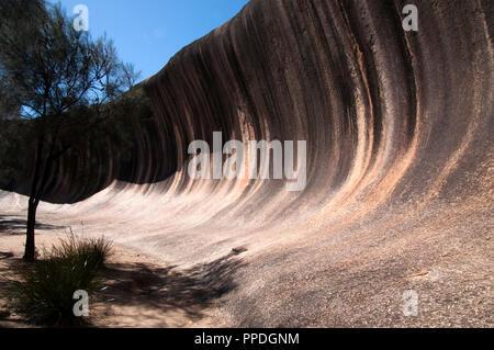Hyden Australia, vista di wave rock un entroterra naturale formazione di roccia
