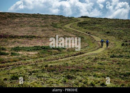 Due uomini ride mountain bike fino un avvolgimento la via verso la cima del faro Selworthy nel Parco Nazionale di Exmoor nel Somerset, Inghilterra. Foto Stock
