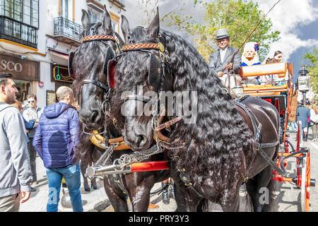 Siviglia, Spagna - 15 Aprile 2018: bellissimi cavalli neri tirando un carro trainato da cavalli a Siviglia fiera di aprile (feria de abril de Sevilla) Foto Stock