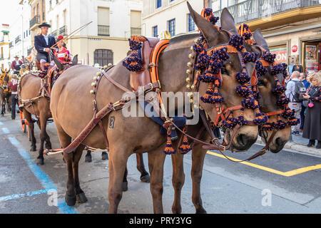Siviglia, Spagna - 15 Aprile 2018: carro trainato da cavalli a Siviglia fiera di aprile (feria de abril de Sevilla) Foto Stock