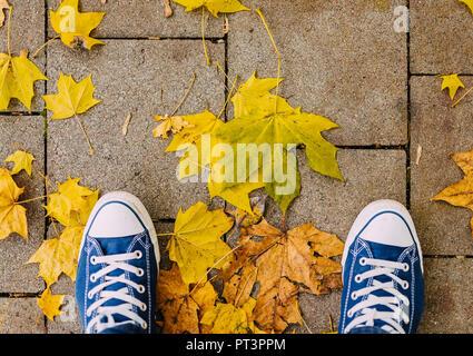 Direttamente sopra il colpo di scarpe e colorato Foglie di autunno sul marciapiede Foto Stock