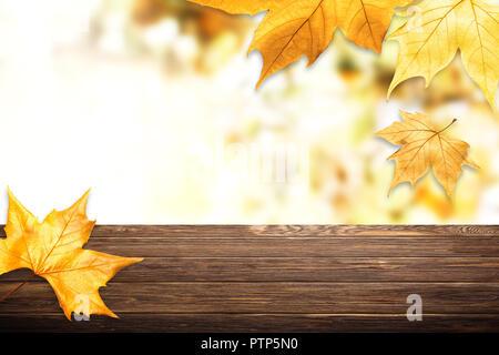 Sfondo giallo con foglie di acero. Аutumnal colorati. Il telaio da foglie di autunno. Soft focus. Foto Stock