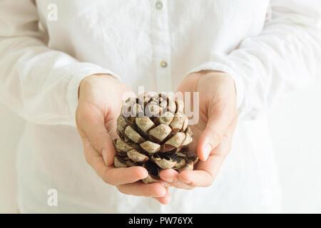 Giovane donna caucasica in bianche vesti detiene in mani belle big pine cono. Natale Capodanno vacanza magica atmosfera. La luce del mattino Foto Stock
