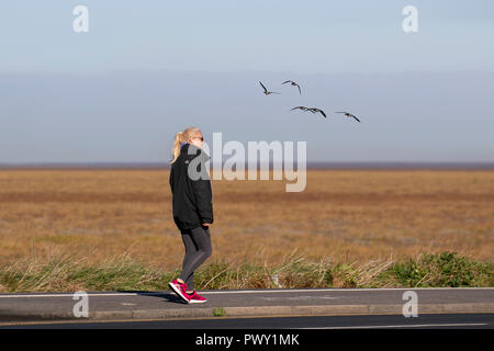 RSPB Marshside, Lancashire. Regno Unito Meteo 18/10/2018 luminoso, avviamento a freddo al giorno come rosa-piedi testa di oche per la loro alimentazione costiera motivi. La migrazione ha inizio nei primi giorni di autunno per i motivi di svernamento, che sono quasi interamente in Gran Bretagna. Rosa-footed oche migrare in branchi che possono numero in molte migliaia al presente il conteggio in questa zona è una stima di 12.000 uccelli. Credito; MediaWorldImages/AlamyLiveNews. Foto Stock