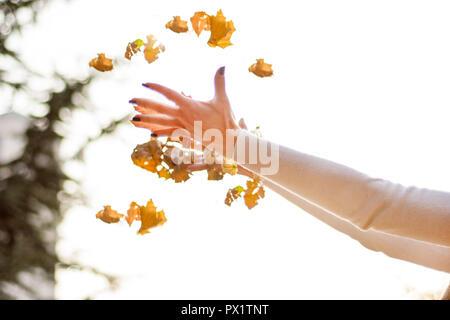 Ragazza mani gettando caduti foglia secca in aria sulla bellissima giornata autunnale nel Parco. La stagione autunnale Concetto di immagine. Close up, il fuoco selettivo Foto Stock