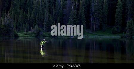 Pesca alla trota in Colorado Montagne, STATI UNITI D'AMERICA. Foto Stock