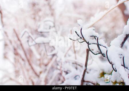 Primo piano di un pezzo di storta di maglie recinto coperto di uno strato spesso di fresco bianco neve soffice contro a sfocare lo sfondo arancione con rami. W fredda Foto Stock