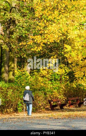 Vecchia persona guardando a colori d'autunno gli alberi del parco Foto Stock