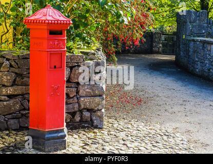 Rosso brillante irlandese casella di posta sulla strada del villaggio rivestiti con pareti in pietra con copertura di red fuchsias in fiore Foto Stock