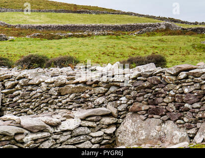 Antichi muri di pietra dividendo una collina sulla costa irlandese presso l antica beehive irlandese formata capanne in pietra cashels o racchiusi masi in Earl