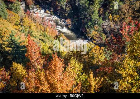 Il fogliame di autunno telai la furia delle acque del fiume Tallulah durante un rilascio di whitewater a Tallulah Gorge parco dello stato del nord-est della Georgia. (USA) Foto Stock