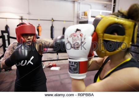 I boxer femmina formazione in palestra Foto Stock